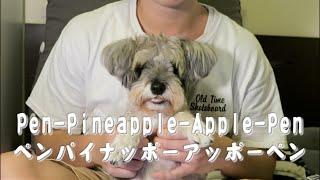 Pen-Pineapple-Apple-Pen ペンパイナッポーアッポーペン - 狗狗 Dog Dabby Vlog