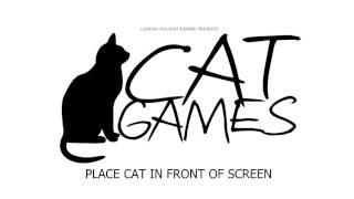 игра для кошек или котов