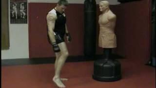 Muay Thai Kicks