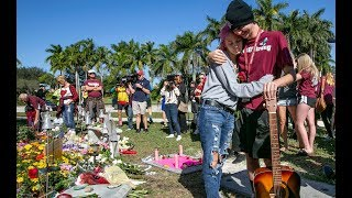 Parkland teacher who survived shooting calls arming faculty 'asinine'