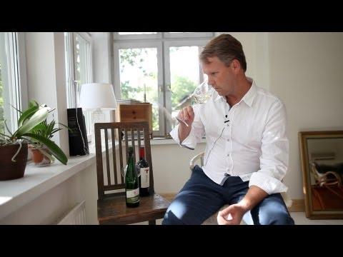 Biohof Veltliner & Tamarí Ar Malbec – Provning