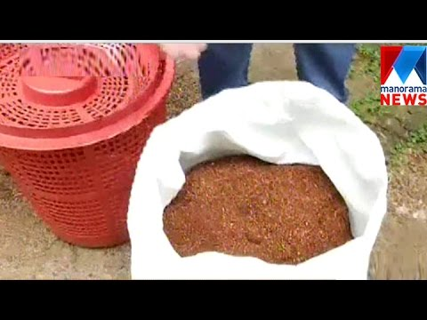 Kozhikode Corporation Waste  Management Success | Manorama News