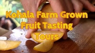 Hawaii Exotic Fruit Farm Tour