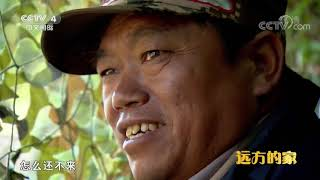 《远方的家》 20191004 大好河山 北纬三十度撷珍| CCTV中文国际