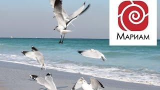 Медитация - Купюра-магнит богатства