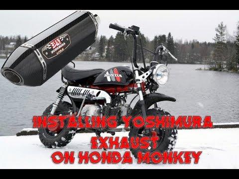 Honda Monkey Yoshimura Exhaust Installation Tecos Garage