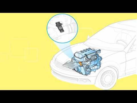 How the car engine control unit (EUC) module controls and works