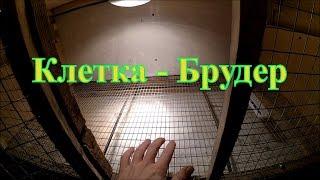 Клетка - брудер для цыплят // Жизнь в деревне // Перепела