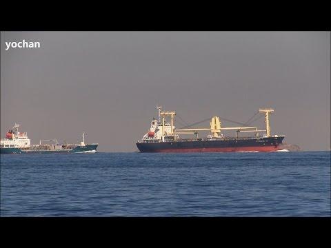 General Cargo ship: SHINLINE 15 (Owner: Shinline - Miri, Malaysia) IMO: 9629237