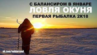 Зимняя рыбалка с балансиром. Ловля окуня в январе. Видео отчёт от 5 января 2018.