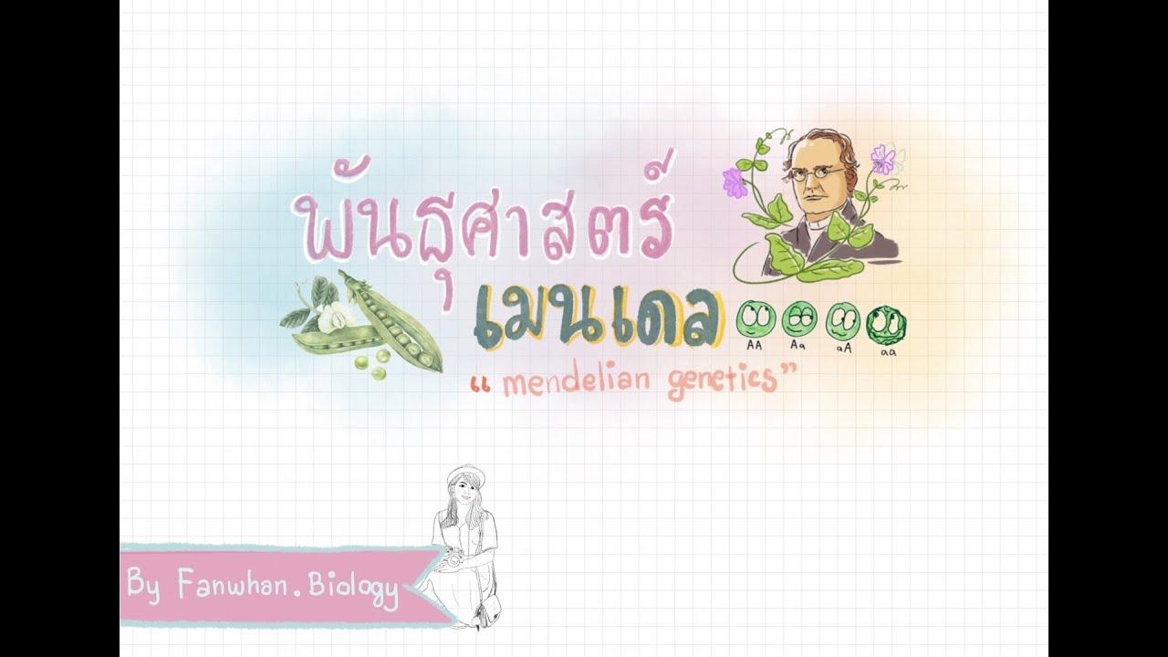 TEACHING BIOLOGY I พันธุศาสตร์เมนเดล ep. 1(mendelian genetics)
