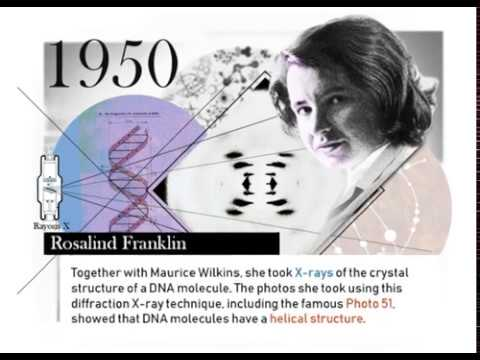 A Brief History Of The Discovery Of DNA