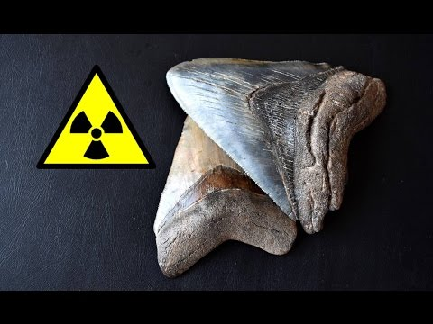 scientists use radioactive dating to