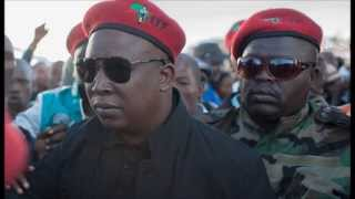 economic freedom fighters thupa