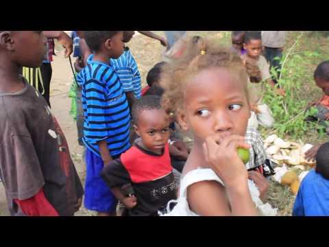 ZANZIBAR 2017 | KIWENGWA | STONE TOWN | BLUE SAFARI