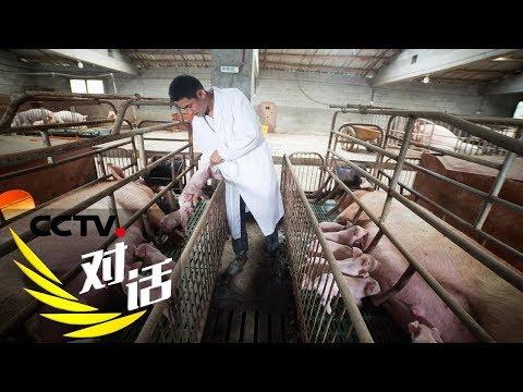 《对话》农业高质量发展之生猪产业样本 20190714 | CCTV财经