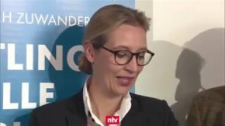 Dubiose Schweizer Wahlkampfhilfe - Weidel soll Verantwortung für Spende tragen