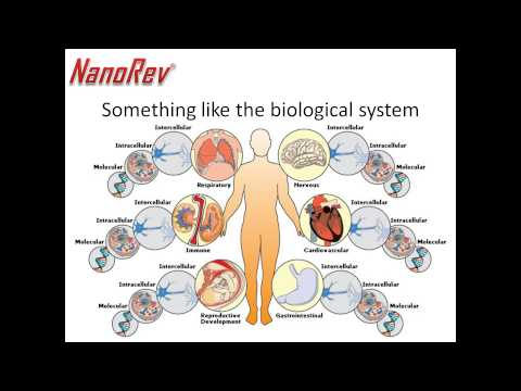 NanoRev  Nanoscience: Plenty of Room at the Bottom