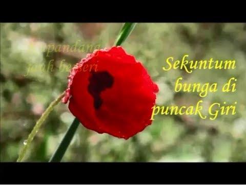 Kr. SEKUNTUM BUNGA DI PUNCAK GIRI - Toto Salmon (Album Lagu Keroncong Asli Vol 13)
