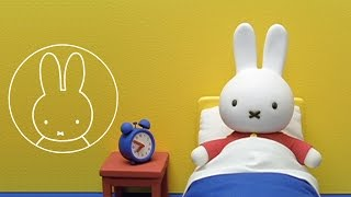 Miffy's Late for School | Miffy & Friends