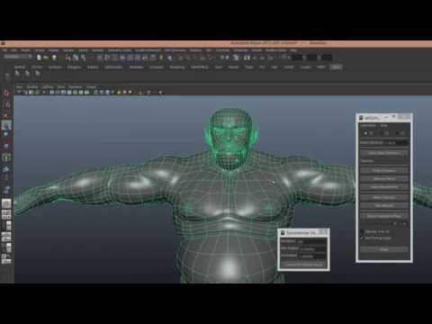 Script for Blendshapes in Maya AbSymMesh