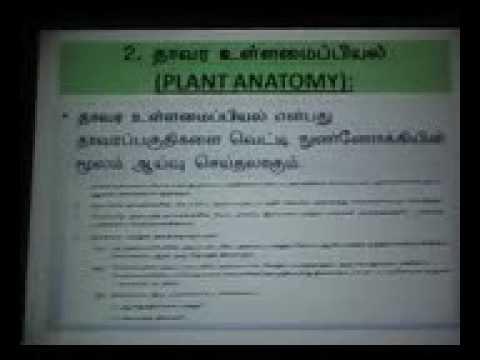 Botany +2 plant tissue types Tamil medium
