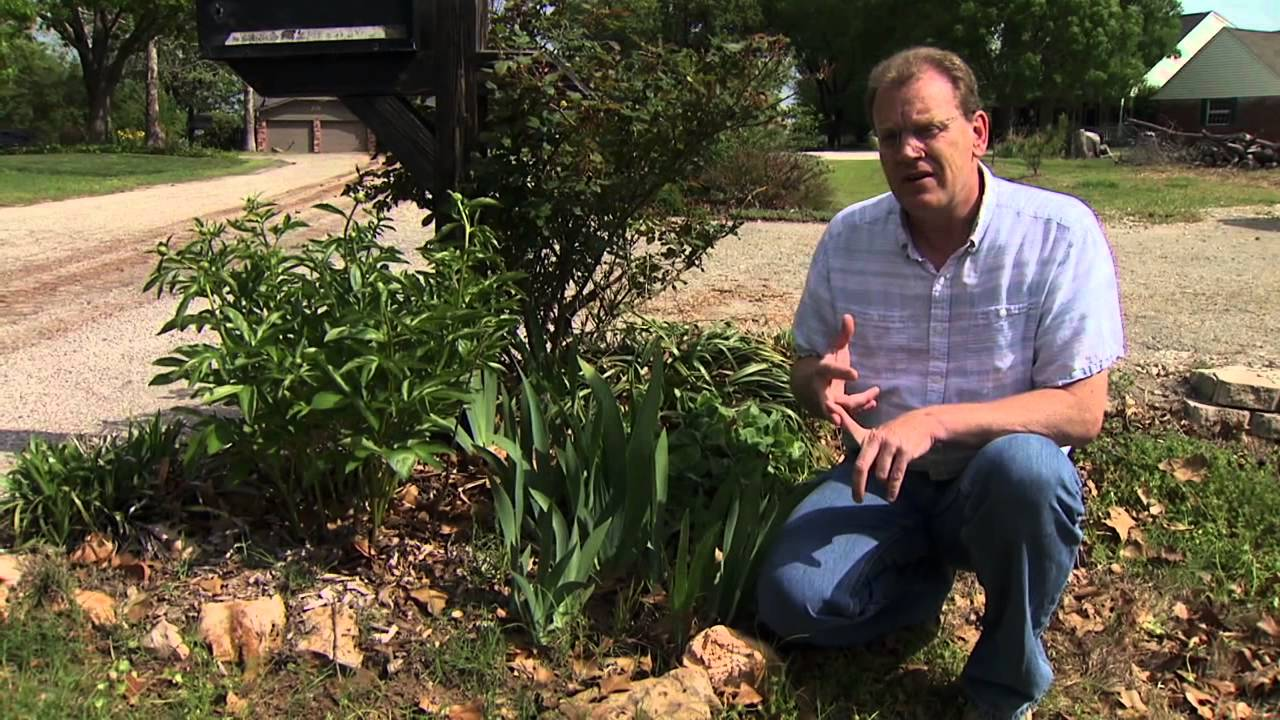 Controlling Grassy Weeds In Flower Beds Youtube
