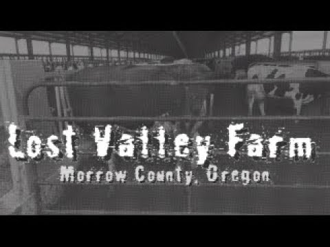 Lost Valley Farm in Morrow County, Oregon