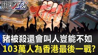 「豬被殺還會叫幾聲,人豈能不如」 103萬人上街為香港做最後一戰!?關鍵時刻20190610-1馬西屏 張俊豪 林國慶 謝龍介 梁文傑 陳麗娜