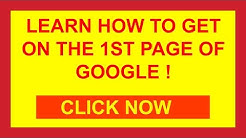 New Port Richey SEO Company | Call (727) 238-5642 | SEO New Port Richey FL