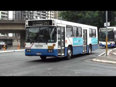 Morning Peak Buses At Lang Park - Sydney Transport