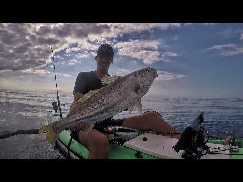 Epic Day Kayak Fishing - Catching Kob Offshore - Part 1
