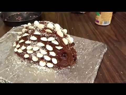 Kyle Makes a Hedgehog Cake