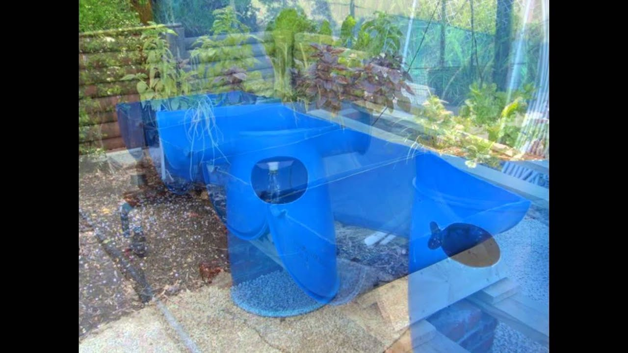 backyard aquaponics backyard aquaponics garden youtube