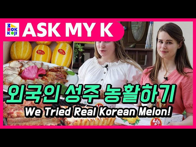 Ask My K : Den and Mandu - We Tried Real Korean Melon! Amazing Trip to Locals in Korea!