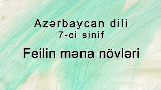 Azərbaycan dili - Feilin qrammatik məna növləri