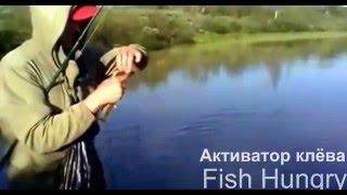 видео Активатор клева для карпа: использование Fishhungry