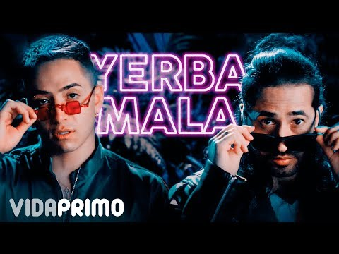 Andy Rivera ❌ Dalmata - Yerba Mala 🌿 [Official Video]