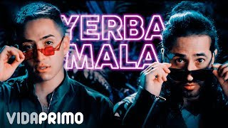 Andy Rivera ❌ Dalmata - Yerba Mala 🌿 [Official Video]