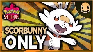 Can I Beat Pokemon Shield With Only Scorbunny?? (NO ITEMS IN BATTLE)