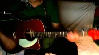 Die Beislhur ~ Peter Schleicher (Honky Tonk Women - Rolling Stones) ~ Cover w/ Fender Sonoran & BT