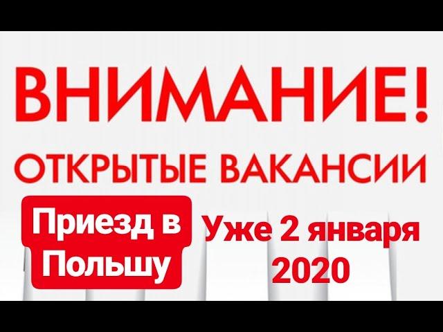 вакансии польша 2020