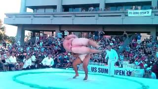 Sumo Slam Gravity