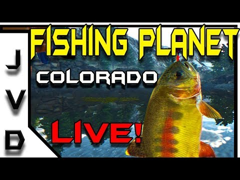 Fishing Planet Live! | Trout Fishing on the Beautiful Rocky Lake in Colorado