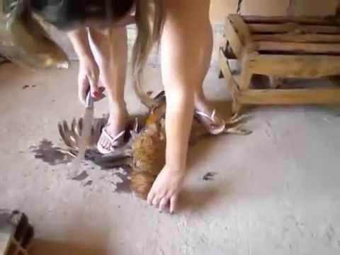 Matando galinha com havaianas branca slim