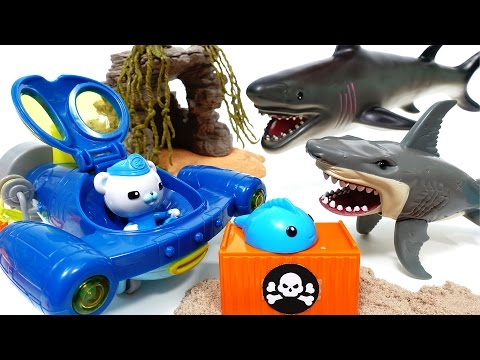 Mutant Shark Alert~! Go Octonauts Gup Q, Rescue Sea Creatures