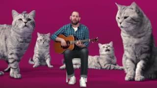 Реклама Вискас с Семёном Слепаковым Котозависимость