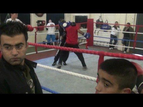 9 year old boxer danish - YouTube