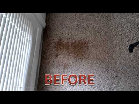 Carpet Stain Removal | Oxi Fresh Carpet Cleaning Fresno CA