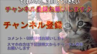チャンネル登録お願いします。 → 元KAT-TUN 田中聖の現在がめちゃめちゃ...